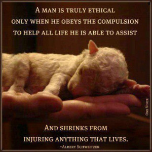 Shelter Dog Quotes Rescue dog quotes