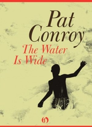A literary analysis of the lords of discipline by pat conroy
