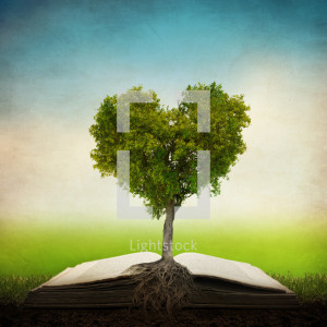 heart shaped tree growing out of an open bible heart heart shaped tree ...